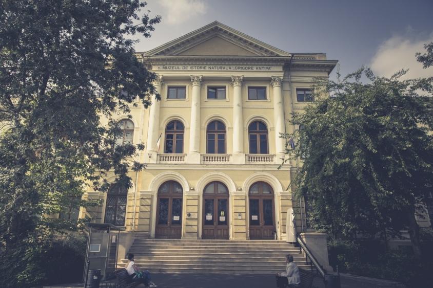 Muzeu Grigore Antipa Bucuresti